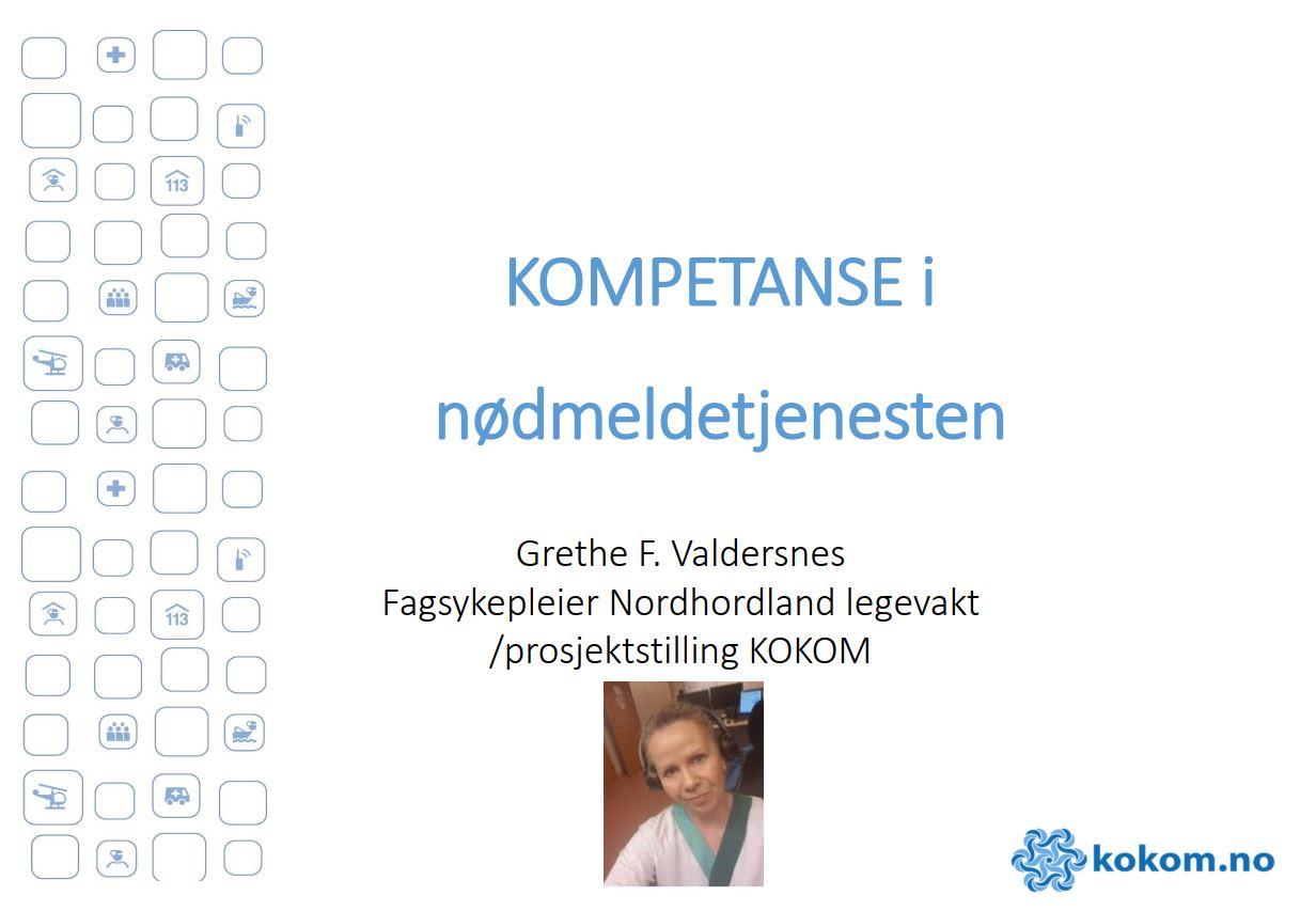 https://kokom.no/wp-content/uploads/2020/12/PP-til-Webinar-19.11-Kompetanse-innspill-Grethe.pdf